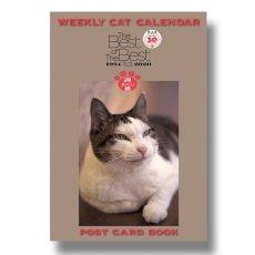 画像1: ポストカードBook週めくりBESTof BEST (1)