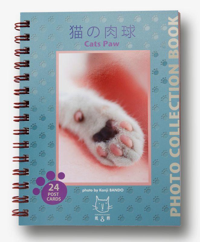 画像1: 板東寛司ポストカードBook 「猫の肉球」 (1)